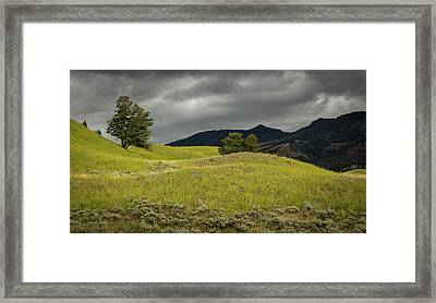 Stormy Fields Of Yellow Framed Print