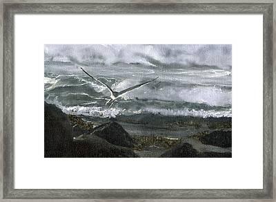 Stormy Flight 2  Framed Print by Charles Parks