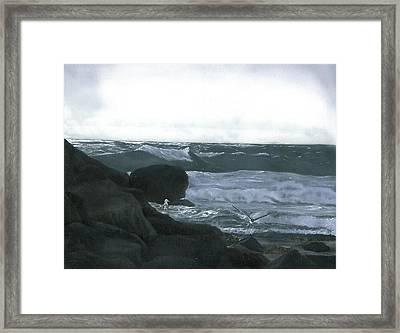 Stormy Flight Framed Print by Charles Parks