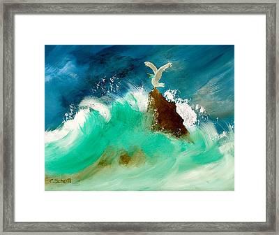 Stormy Landing Framed Print