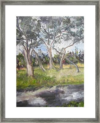 Stormy River Framed Print by Lisa Boyd