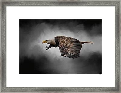 Stormy Sky Flight Framed Print by Jai Johnson