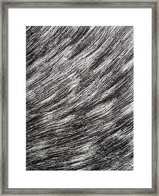 Stormy Framed Print by Uwe Schein