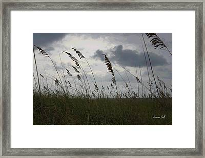 Stormy View From The Dunes Framed Print by Suzanne Gaff