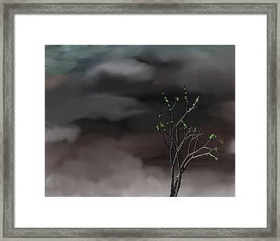 Stormy Weather Framed Print by David Lane
