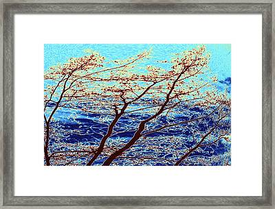 Stormy Weather Framed Print by Will Borden