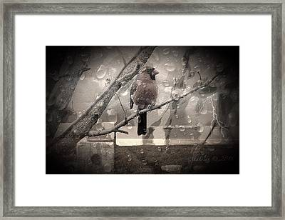 Stormy Window Framed Print