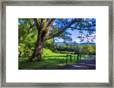 Story In The Smokeys II Framed Print by Jon Glaser