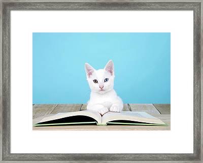 Story Time Kitten Framed Print