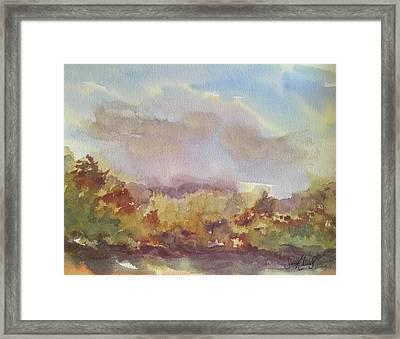 Stourhead Woods Framed Print