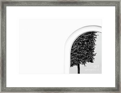 St.petersburg  #7906 Framed Print