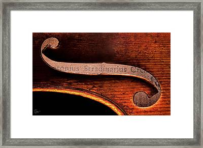 Stradivarius Label Framed Print