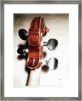Straduari  Framed Print by Steven Digman