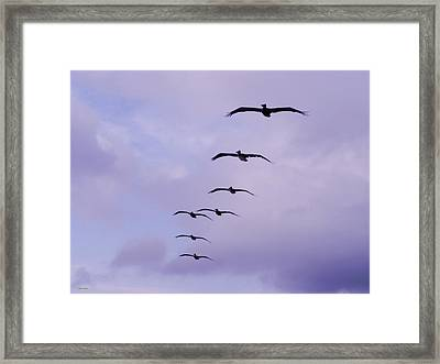 Straighten Up Fly Right Framed Print