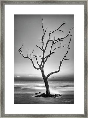 Stranded 2 Driftwood Beach Sunrise Jekyll Island Georgia Art Framed Print