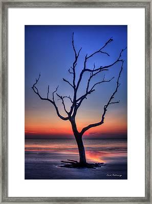Stranded Driftwood Beach Sunrise Jekyll Island Georgia Framed Print