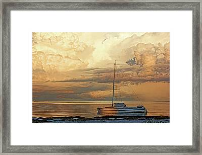 Stranded Framed Print by HH Photography of Florida