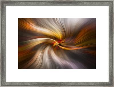 Strands Of Light Framed Print by Debra and Dave Vanderlaan