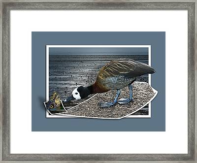 Framed Print featuring the photograph Strange Encounter by Jane McIlroy