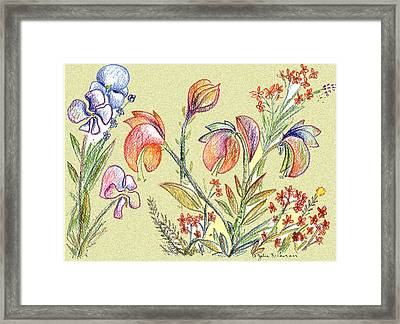 Strange Orchid Drawing Framed Print by Julie Richman