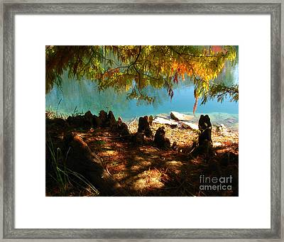 Framed Print featuring the photograph Strange Roots by Misha Bean