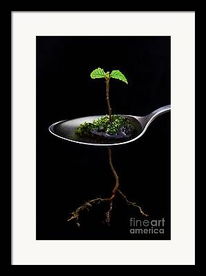 World Of Thought Framed Prints