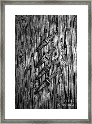 Strap Hinges And Screws Framed Print