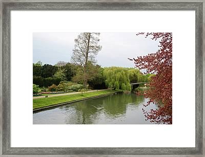 Stratford Upon Avon 1 Framed Print by Douglas Barnett