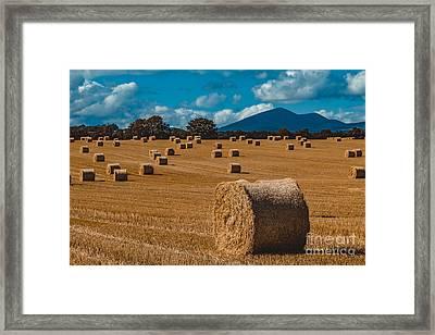 Straw Bale In A Field Framed Print