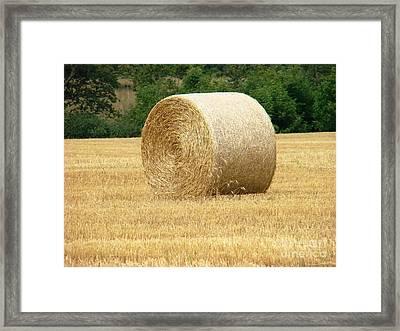 Straw Bale Framed Print