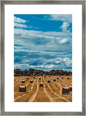 Straw Bales In A Field 2 Framed Print