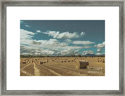 Straw Bales In A Field 3 Framed Print