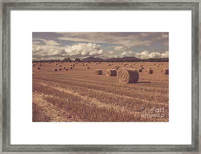 Straw Bales In A Field 4 Framed Print