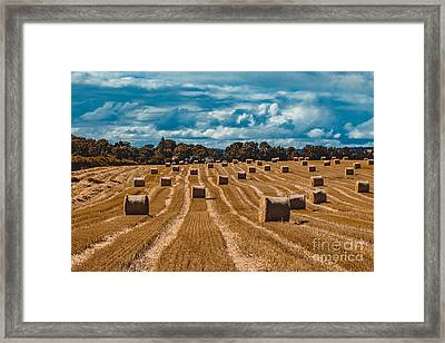 Straw Bales In A Field Framed Print