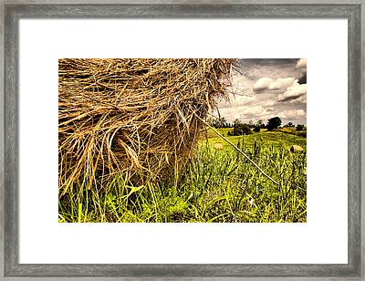 ..straw... Framed Print by Russell Styles