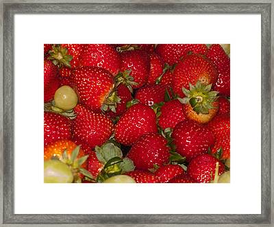 Strawberries 731 Framed Print