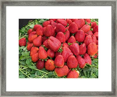 Strawberries For Sale In Souk Framed Print by Panoramic Images