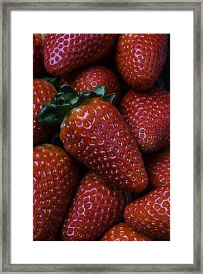 Strawberries Framed Print by Garry Gay