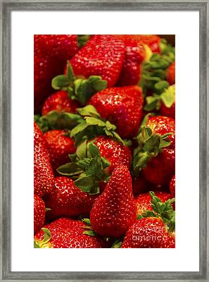 Strawberries Framed Print by Svetlana Sewell