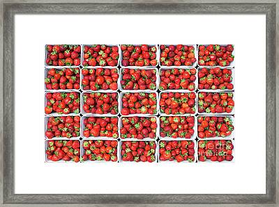 Strawberries Framed Print by Tim Gainey