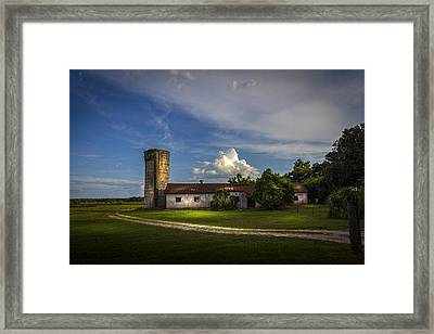 Strawberry County Framed Print