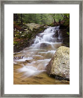 Strawberry Creek Cascade Framed Print by Benjamin Williamson