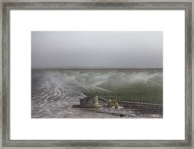 Strawberry Field Is Crying Framed Print