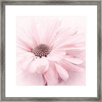Framed Print featuring the photograph Strawberry Ice by Darlene Kwiatkowski