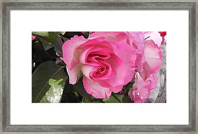 Strawberry Ice Framed Print by Lanjee Chee