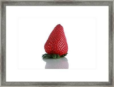 Strawberry Isolated On White Framed Print by Michael Ledray