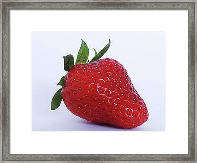 Strawberry Framed Print by Julia Wilcox