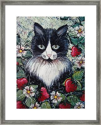Strawberry Lover Cat Framed Print