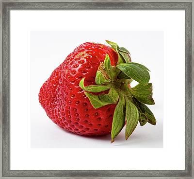 Strawberry Macro Framed Print by Robert Ullmann