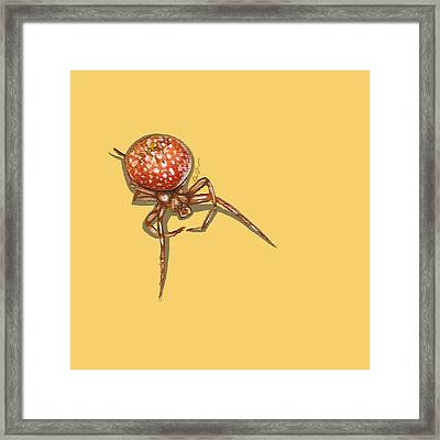 Strawberry Spider Framed Print by Jude Labuszewski